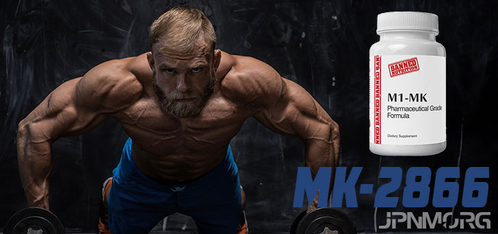 MK-2866 (Ostarine) - All You Need To Know About Ostabolic
