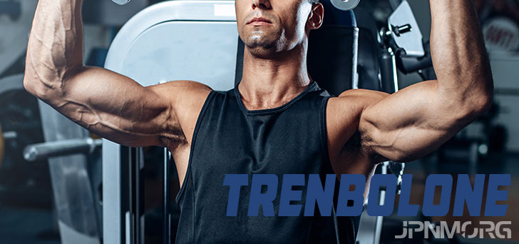 Trenbolone (Tren) - The Ultimate Guide In 2019! [Video]
