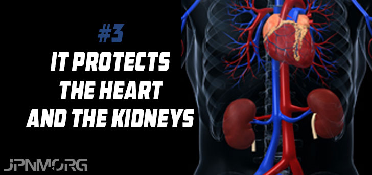 best all in one supplement for liver heart and kidney support